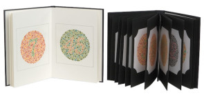 Ishihara Color Vision Test Book (10 Plate)