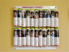 16-Unit AEK Epinephrine Storage Panel