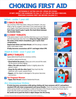 "Choking First Aid Poster, 17"" x 22"", Laminated"