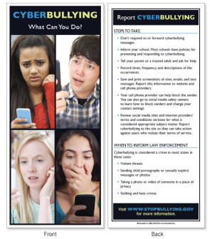 Cyberbullying: What Can You Do? Fact Card, 50/pack
