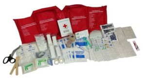 WNL Products Deluxe First Aid Kit