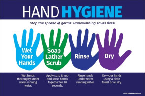 "Hand Hygiene Poster, 18"" X 22"", Laminated"