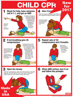 "Child CPR Chart, Laminated 18"" x 24"""