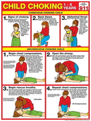 "Child Choking Chart, Laminated 18"" x 24"""