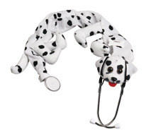 Dalmation Stethoscope Cover