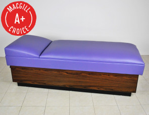 [$] Lindsay Recovery Couch with Base, No Drawers