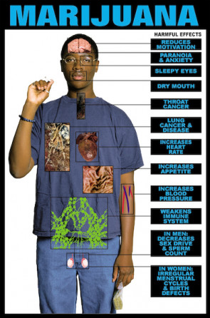 "Harmful Effects of Marijuana Chart, Laminated 24"" x 36"""