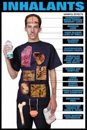 "Harmful Effects of Inhalants Chart, Laminated 24"" x 36"""