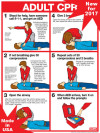 "Adult CPR Chart, Laminated 18"" x 24"""